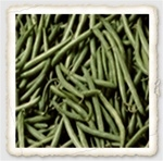 Bronco Heirloom Bush Bean Seed