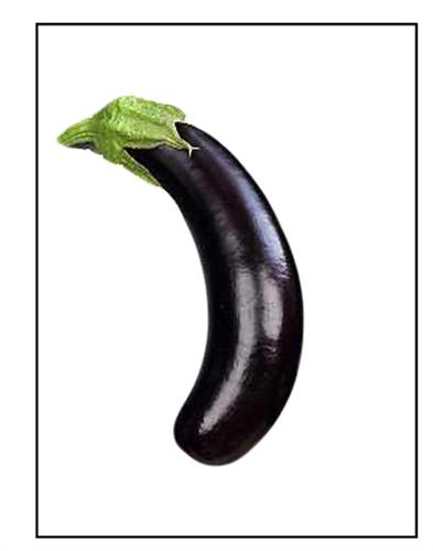 Eggplant Little Finger Piedmont Farm And Garden