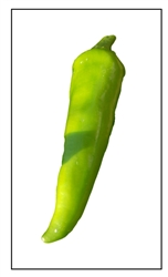 Chili Numex Pepper