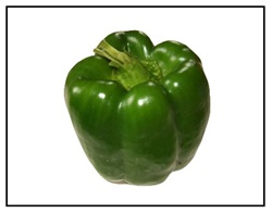 Colossal Bell Pepper Plant