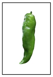 Cowhorn Pepper