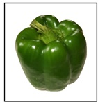 Emerald Giant Bell Pepper Plant