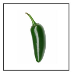 Jalapeno Pepper