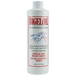 Bigeloil Liniment 16 oz.