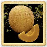Rocky Ford Cantaloupe Seed