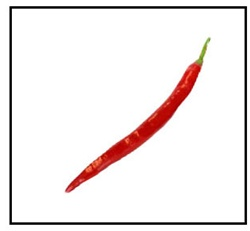 Cayenne Long Red Thin Pepper