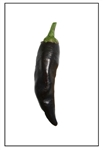Cayenne Purple Pepper