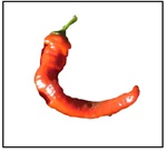 Hot Portugal Pepper
