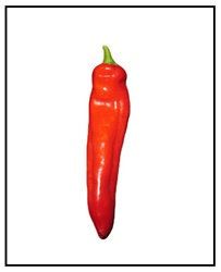 Numex Joe Parker Pepper