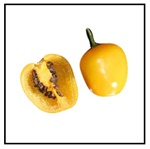 Manzano Yellow Pepper