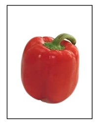 Red Beauty Bell Pepper Plant