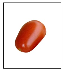 Red Grape Tomato