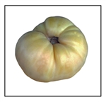 Big White Pink Stripe Tomato