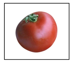 Clint Eastwood's Rowdy Red Tomato