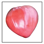 Oxheart Pink Tomato
