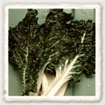 Fordhook Giant Swiss Chard Seed