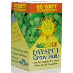 "<SPAN style=""FONT-FAMILY: Arial; COLOR: #006000; FONT-SIZE: 14pt; FONT-WEIGHT: bold"">DAYSPOT LIGHTBULB 60 WATT</SPAN>"